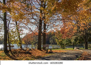 A park bench in rural Ohio in Autumn sitting by a path leading to a pond. This in Hubbard Valley County Park in Medina, OH.