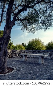 Park Bench at St Paul De Vence in southern France.
