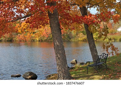 Park bench under brightly colored maple trees next to a lake in Washington, New Hampshire
