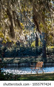 Park bench under oak tree covered in Spanish Moss in Pawleys Island, the lowcountry near the beach in South Carolina