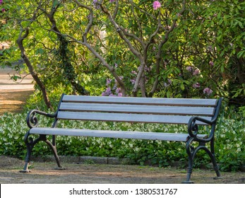 park bench under a tree for relaxing