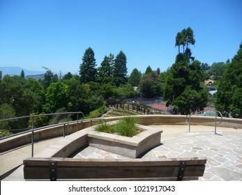 Park in Berkeley, California 2011
