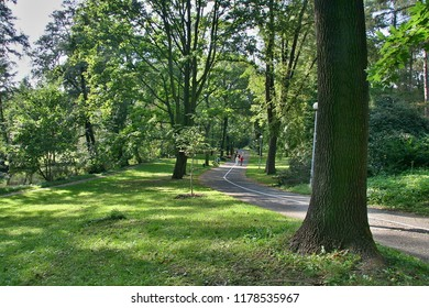 Park between the walls of the city of Olomouc and the shoulder of the Morava River with asphalt, divided walkway for pedestrians and cyclists