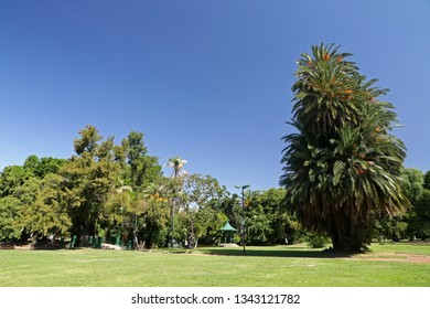 Park in Buenos Aires, Argentina