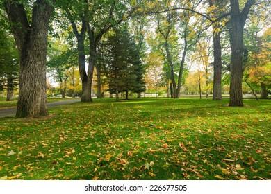 Park in Carson City