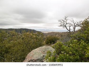 The park of Chiricahua - Arizona - the United States