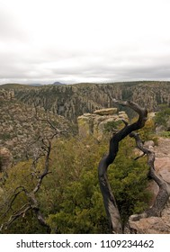 The park of Chiricahua, a day of bad weather - Arizona - the United States
