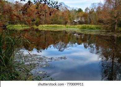 A park facility beside a quiet pond at Bogue Chitto State Park, Washington Parish, Louisiana