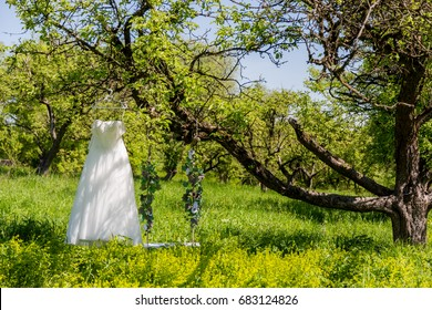 The park hangs on a tree a wedding dress and a swing dipped in artificial flowers