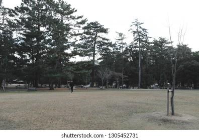 park in japan