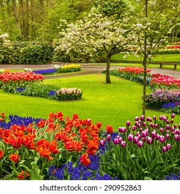Park Keukenhof - tulip flower garden, Holland
