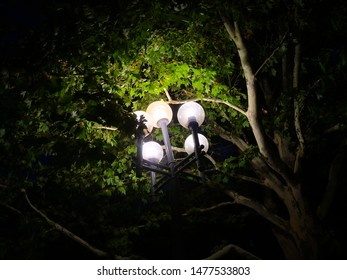 Park lantern in the night, lighting equipment, abstract background