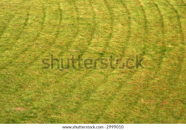 Park lawn lines after mowing