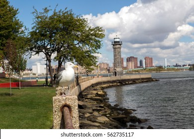 Park with lighthouse in Roosevelt island