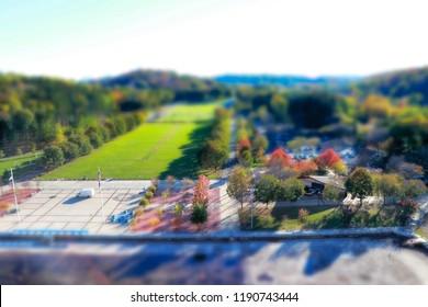 A Park like Miniture