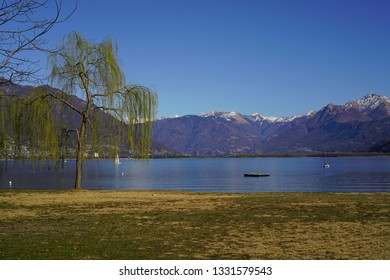 Park of Locarno with beautiful spring trees