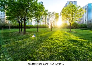 park in lujiazui financial center, Shanghai, China - Shutterstock ID 1664994619