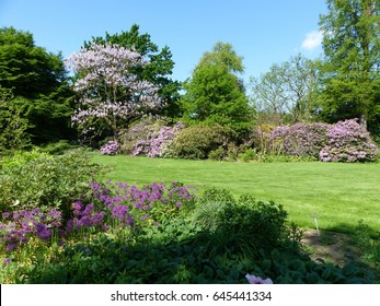 Park in May with beautiful different flowers. Hanover Lower Saxony, Germany.