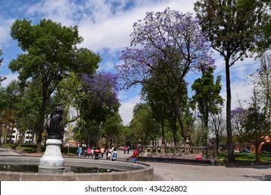 Park Mexico City