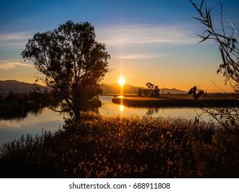 Park of Migliarino, San Rossore, Massaciuccoli - Sunrise in the ditch Burlamacca