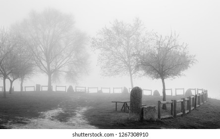 park in the mist, winter pandscape
