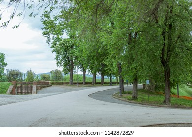Park on the historic walkable city wall of the Italian city of Lucca in the Pisa region