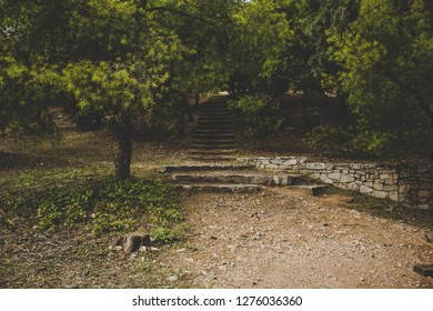 park outdoor symmetry photography with ground trails path way for walking to stone upstairs place in shadows under trees