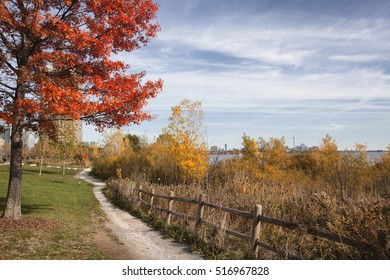 park path overlooking downtown Toronto in the background