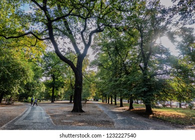 Park with paths along Odra in Wroclaw, Poland