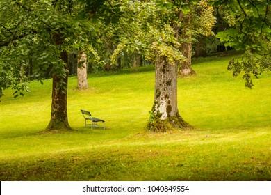 Park of Pieve, Cavalese, Val di Fiemme, Trento, Trentino Alto Adige, Italy