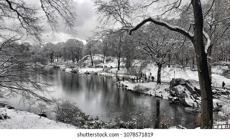 park and pond in the snow