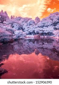 Park Pond, Tokyo, Japan. Extended Infrared.