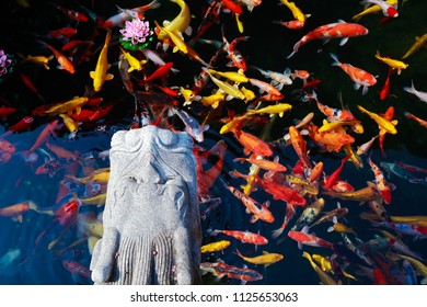 Park pool in breeding ornamental goldfish and dragon sculpture