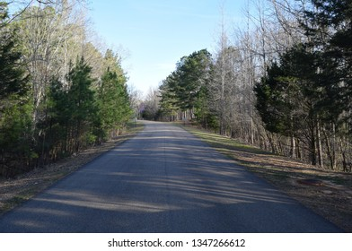 Park road in Trace State Park, Mississippi