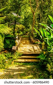 Park with small bridge, Thailand.