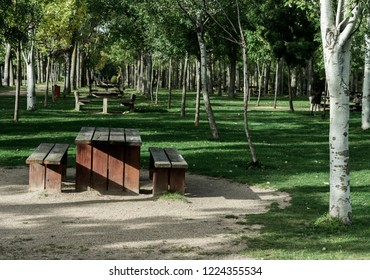 park with trees and benches along riverbank in autumn