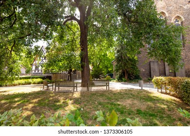 Park with trees and benches when the weather is nice