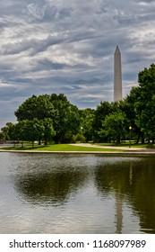 A park view of the Washington Monument as seen through the surrounding trees of Washington, DC.