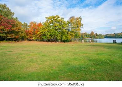 A park in Virginia Water in fall colors, Surrey, UK