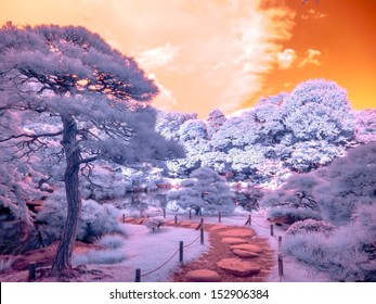 Park Walk, Tokyo, Japan. Extended Infrared.