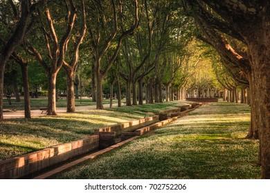 Park in Zaragoza Spain