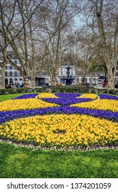 A park in Zurich, Switzerland with yellow and blue pansies