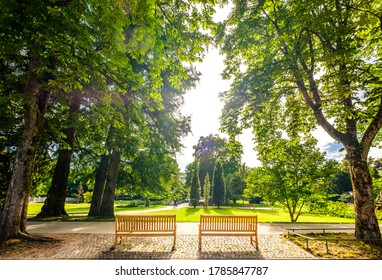 parkbenches at a park in baden-baden - germany