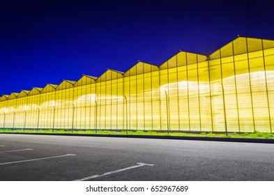 Parking near the luminous facade of the greenhouse. Greenhouse plant at night. Night landscape luminous glass construction.