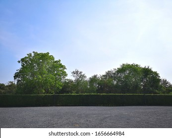 Parking lot sprinkled with gravel on tree bush nature background