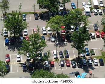 parking lot under trees