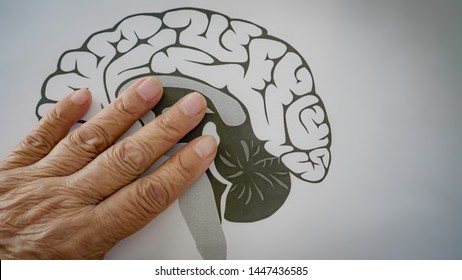 Parkinson and Alzheimer Senior Elderly Patient. Save the Brain Health care and medical concept.
