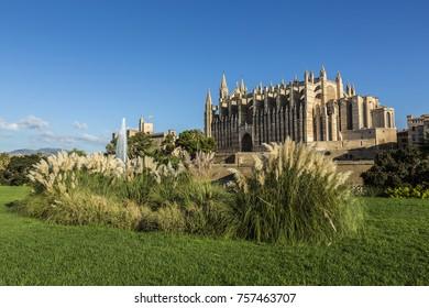 Parkland Palma de Mallorca