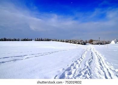 Park's snowy landscape