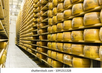Parmigiano Cheese factory production shelves with aging cheese in Italy, Bologna